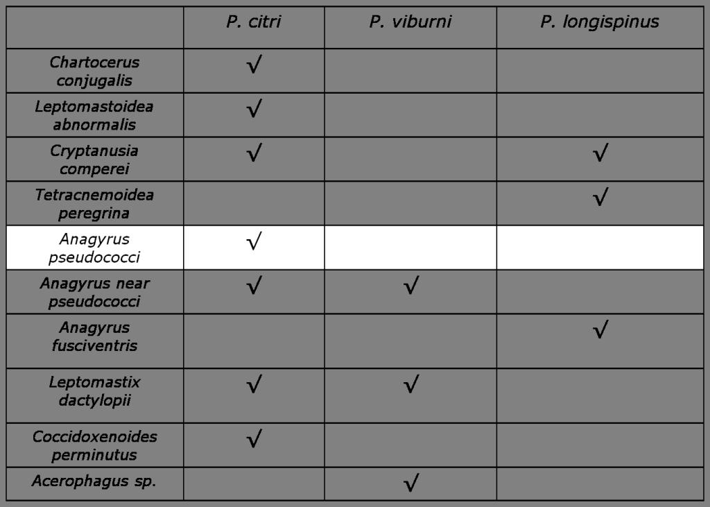 tabla prasitoides